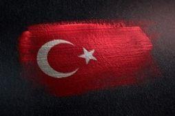 osobennosti_upotrebleniya_alkogolya_turcii